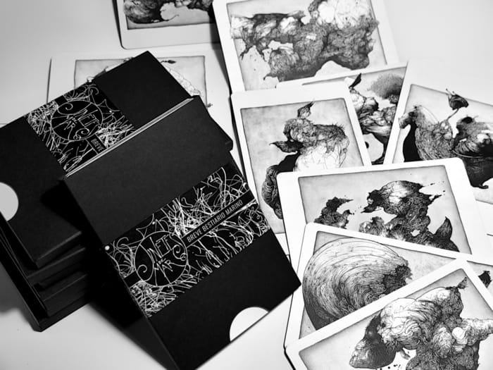 Sea Riders Marine Bestiary Postcards Pack Photo