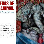 Escenas de la vida animal